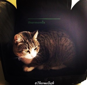 ThermoCatTMXBag