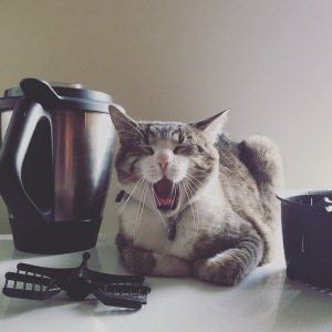 ThermoCat loves the BBL set